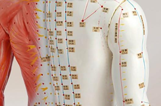 acupuntura madrid